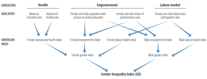 gender-inequality-index-calculation-process